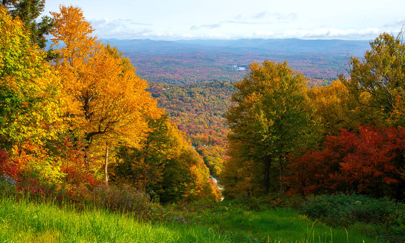 Best Fall Hikes in Vermont Near Stratton